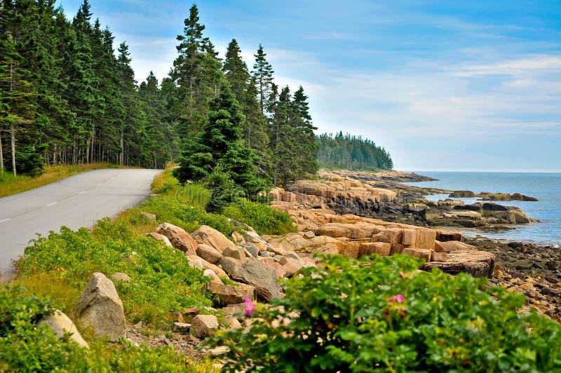прибрежная дорога стоковое изображение