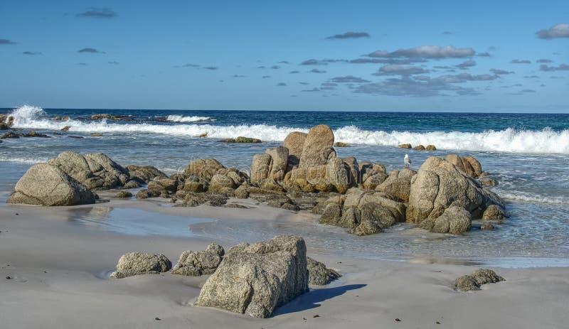 Прибрежная сцена в Тасмании Австралии стоковая фотография