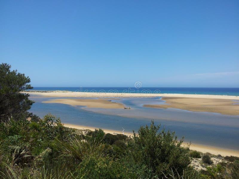 Прибрежное Виктория стоковое фото