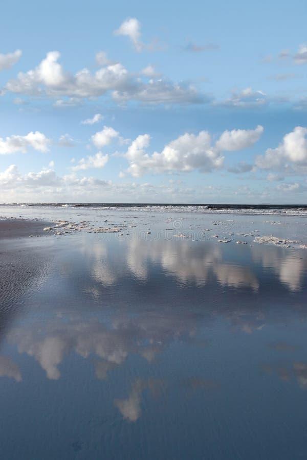 прибрежное отражение стоковая фотография