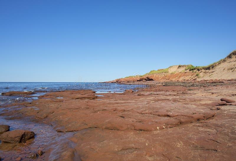 Прибрежные красные горные породы стоковая фотография rf