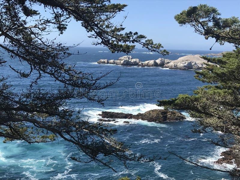 Прибрежный взгляд от скалы Калифорнии стоковое фото rf