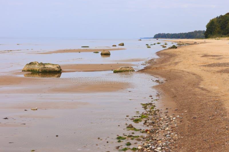 Прибрежный ландшафт в поздним летом стоковые изображения