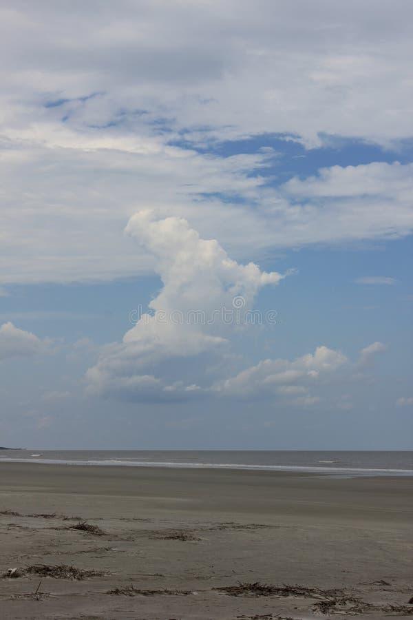 Прибрежный остров GA Камберленда берега стоковое фото