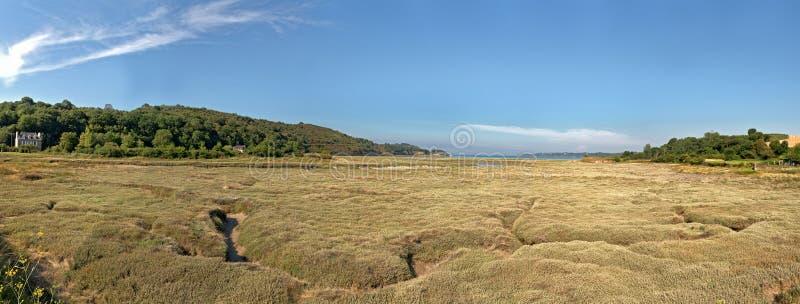 Прибрежный панорамный ландшафт травы с голубым небом brittani стоковое фото rf