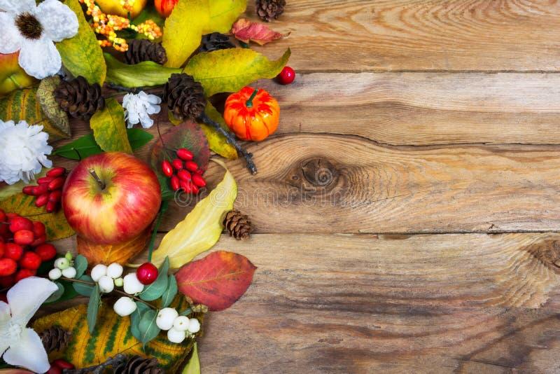 Приветствие благодарения с тыквой, яблоками, падением выходит, конусы a стоковая фотография