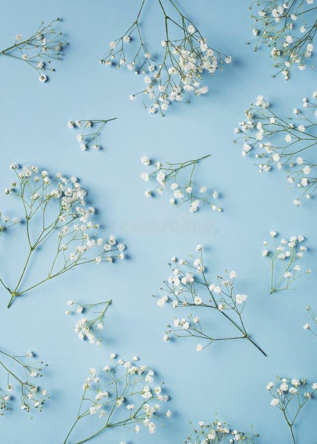 Приветствовать голубой плоский положенный день матерей концепции карты, день рождения, свадьба с цветками стоковая фотография