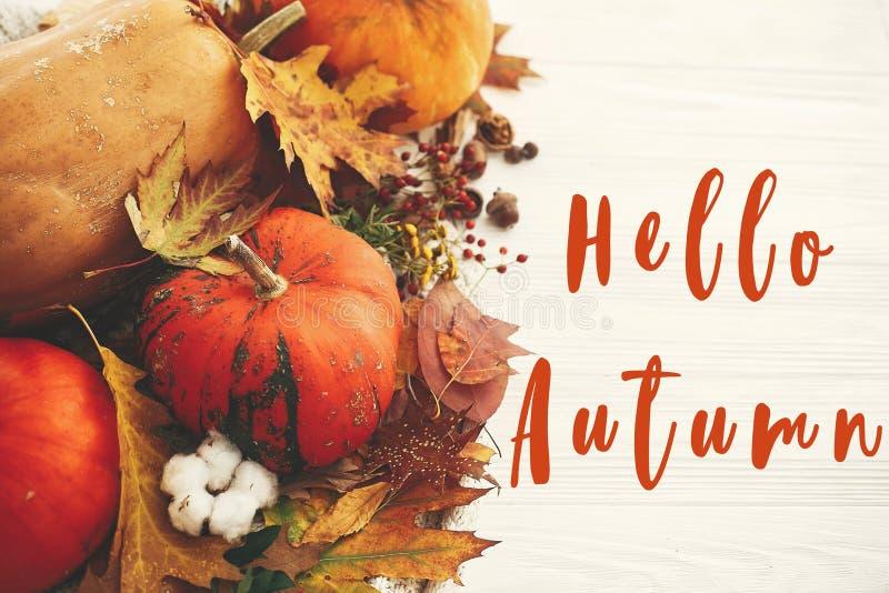 Привет, осень текст, осенний знак приветствия на тыквах с осенними листьями, хлопок, корица, аниз, акорны, орехи, ягоды, осенние  стоковая фотография
