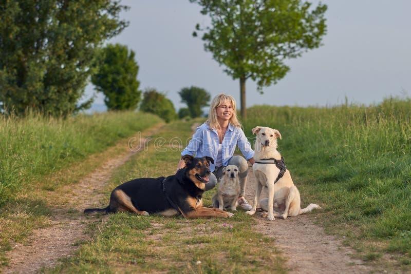 Привлекательная белокурая женщина на сельском пути с ее 3 собаками стоковое фото rf