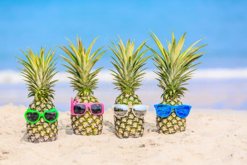 Привлекательные ананасы на пляже против моря бирюзы Wearin стоковая фотография