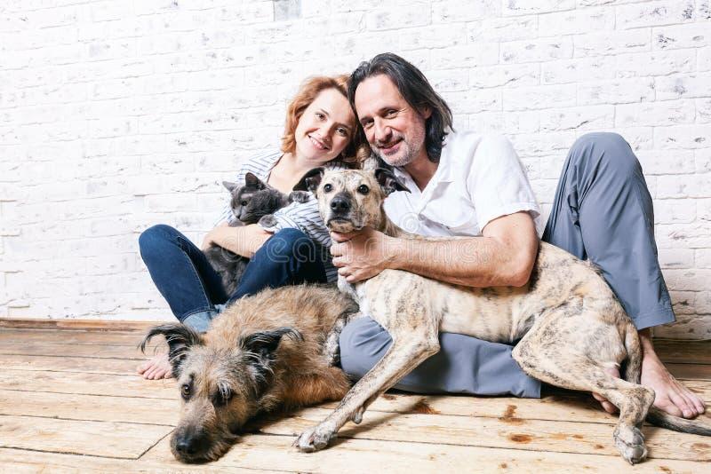 Привлекательный человек и его молодая жена с любимчиками, 2 собаками и котом, стоковое фото