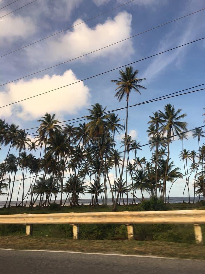 Привод острова стоковое фото rf