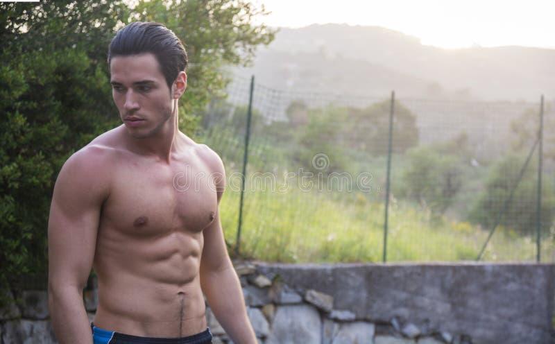 Привлекательный мышечный без рубашки молодой человек в природе стоковое изображение rf