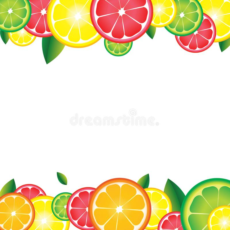 пригодность цитруса предпосылки fruits здоровая изолированная белизна типа ломтиков жизни кивиа померанцовая Для бара, коктеили,  бесплатная иллюстрация