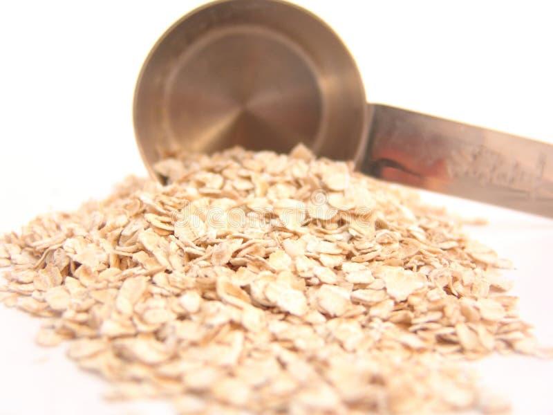 придайте форму чашки измеряя oatmeal стоковое изображение rf