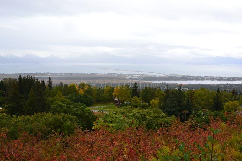 Приземляет конец почтового голубя Аляски стоковые изображения