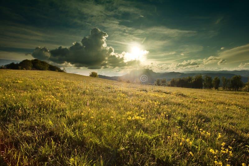 Прикарпатская гора стоковое фото rf
