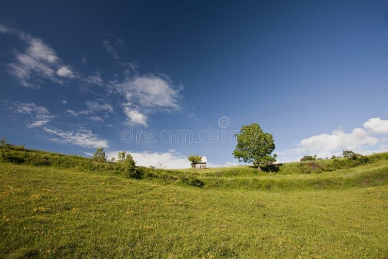 Прикарпатская гора стоковая фотография rf