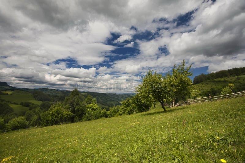 Прикарпатская гора стоковые фото
