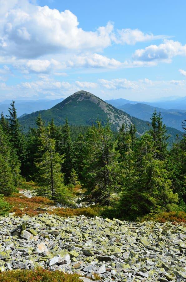 Download Прикарпатские горы в лете. стоковое фото. изображение насчитывающей украина - 37926388