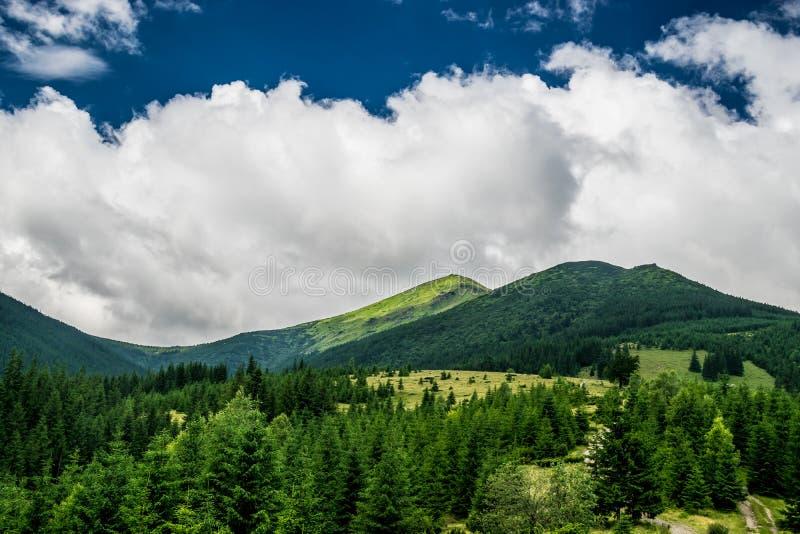 Прикарпатские горы в Украине стоковое изображение rf