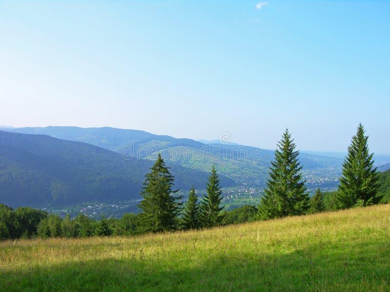 прикарпатские горы Украина стоковые изображения