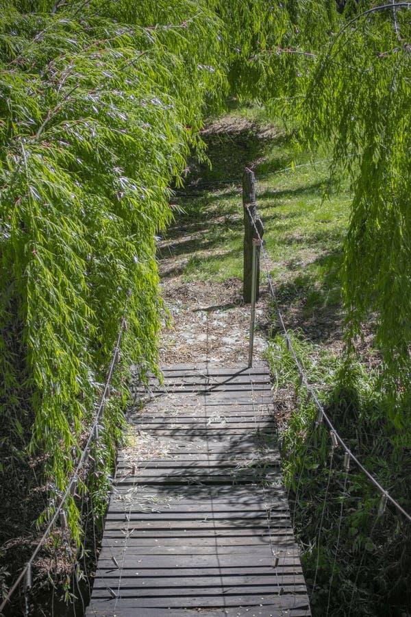 Прикрепленный на петлях деревянный мост стоковые изображения