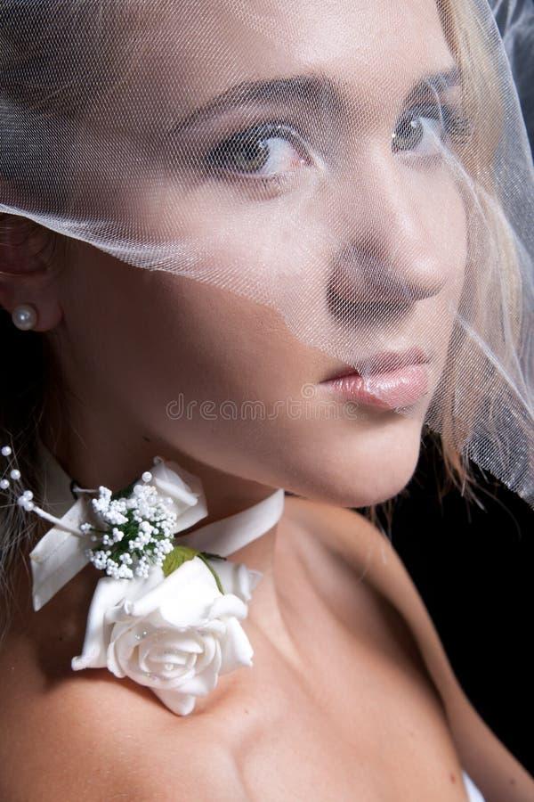 прикладывающ красивейшую невесту составьте детенышей венчания стоковая фотография rf