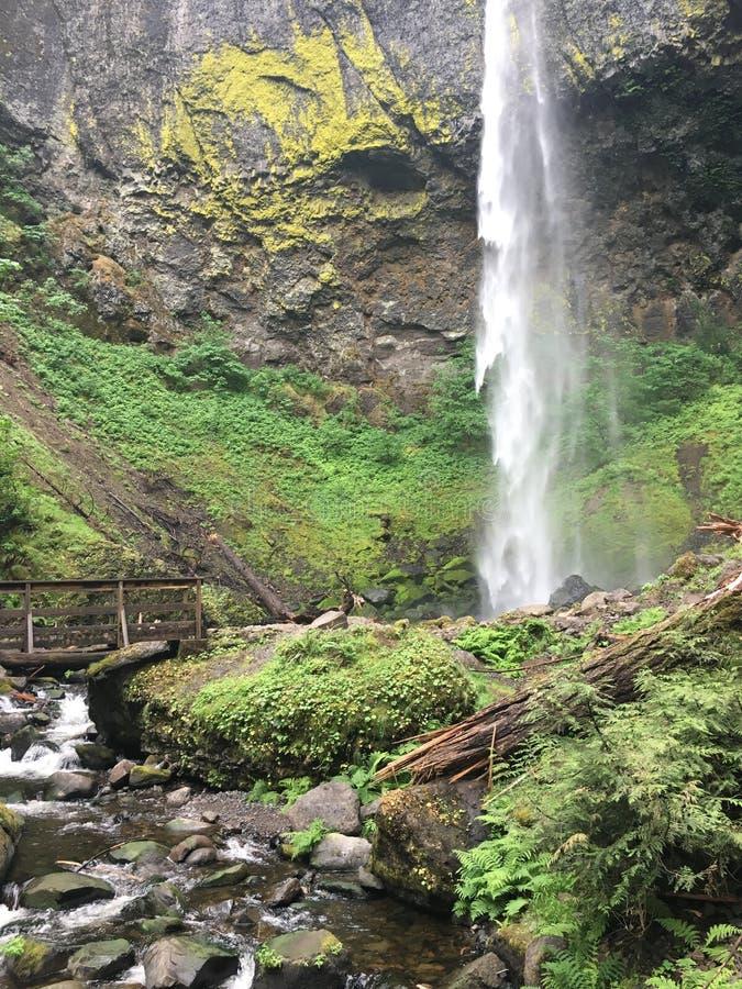 Приключение водопада стоковое изображение rf