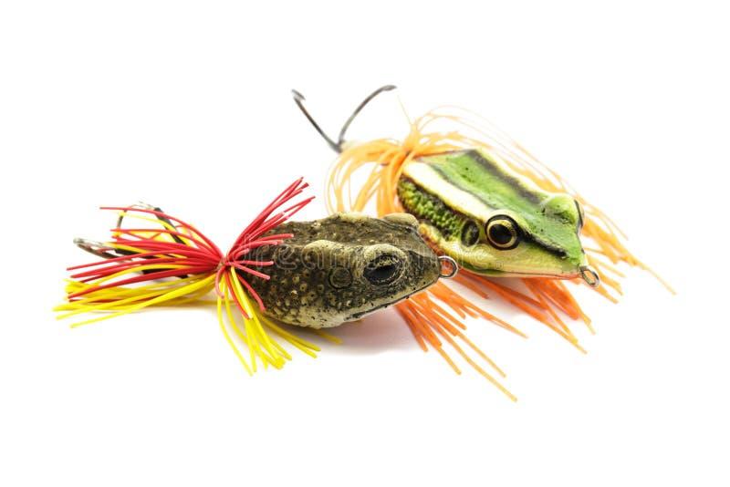 Приманка рыб стоковые фото