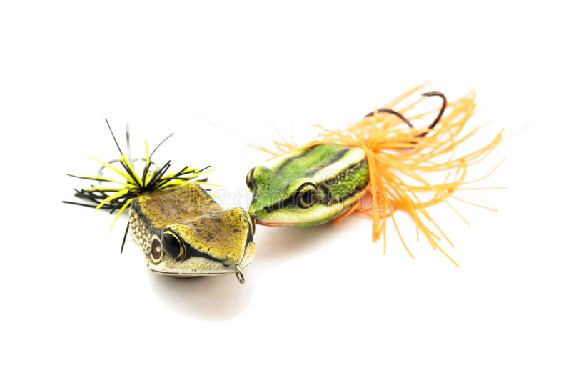 Приманка рыб стоковые фотографии rf