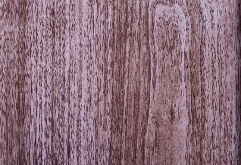 Примеры деревянных облицовок путем быть покрытым на макулатурном картоне стоковые изображения