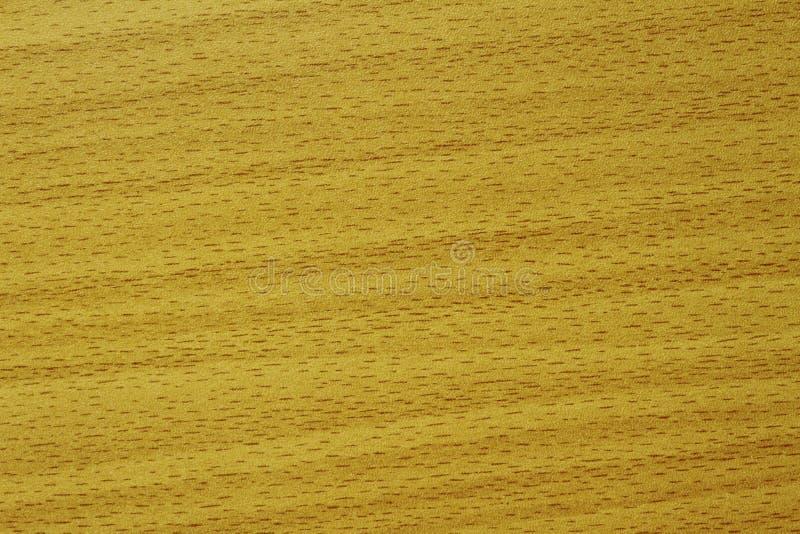 Примеры облицовок для того чтобы дать двери мебели и шкафа деревянный взгляд стоковая фотография