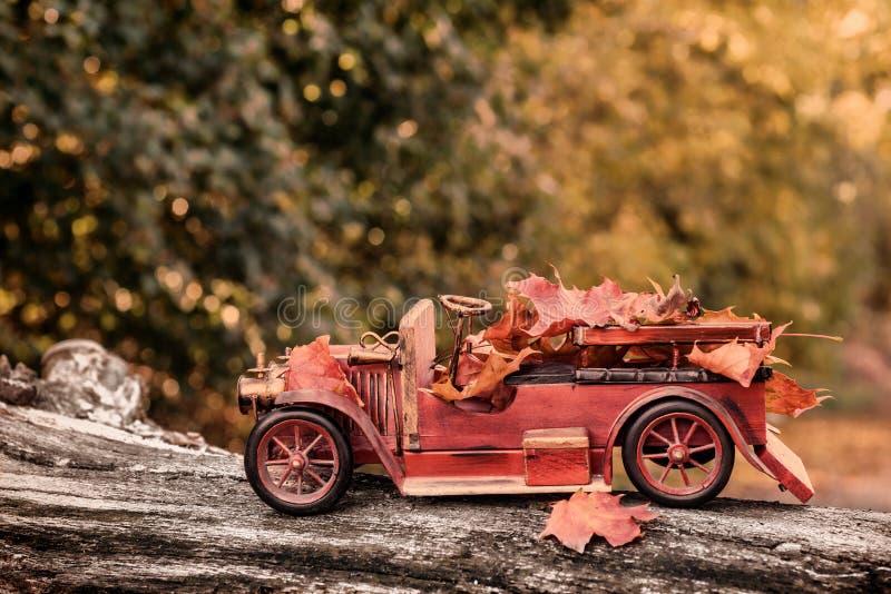 Приносить осенью стоковые изображения