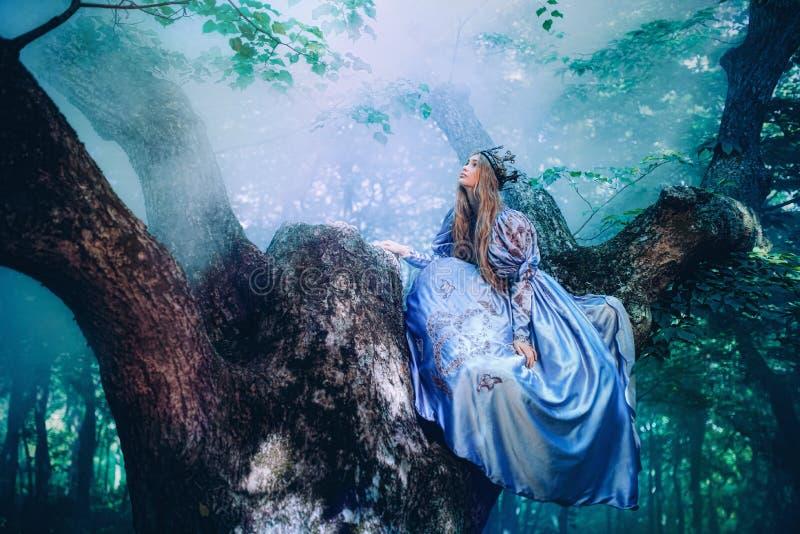 Принцесса в волшебном лесе стоковое изображение