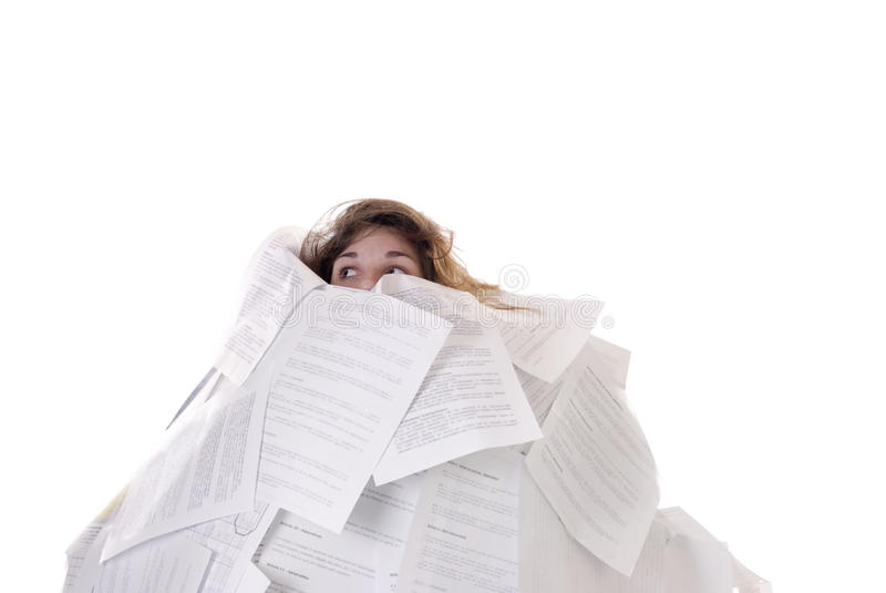 принципиальная схема дела детеныши женщины бумаг стоковое изображение
