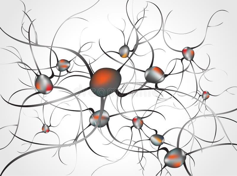 принципиальная схема мозга внутри слабонервной системы невронов Принципиальная схема невронов и слабонервной системы иллюстрация вектора
