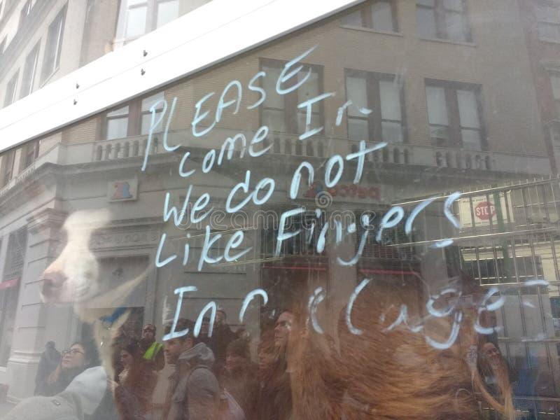 Принятие любимчика, передвижной блок принятия, NYC, NY, США стоковые изображения rf