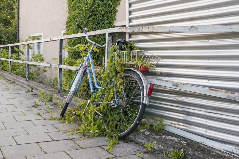 Припаркованный и перерастанный велосипед на обочине стоковое изображение rf