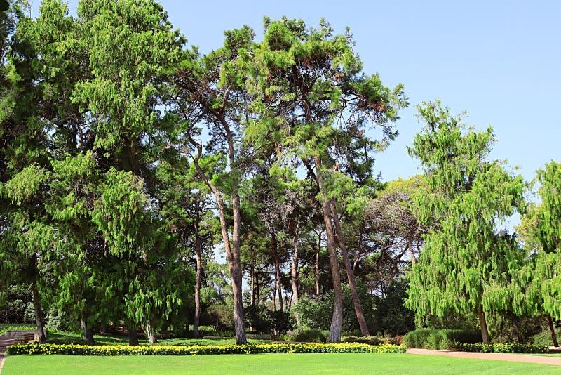 Припаркуйте Ramat Hanadiv, мемориальные сады барона Edmond de Rothschild, Zichron Yaakov, Израиля стоковая фотография