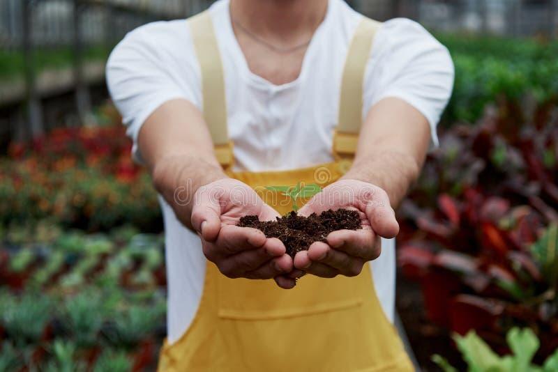 Природа в наших руках Менсы держат землю за руки, а растение в середине мало стоковое изображение