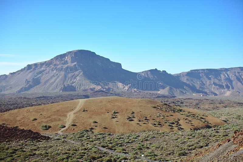 Природа в пустыне, кусте, горах, островах, камнях и кустах, заводах под убийственным солнцем, красной горе, Teide национальном стоковые фото