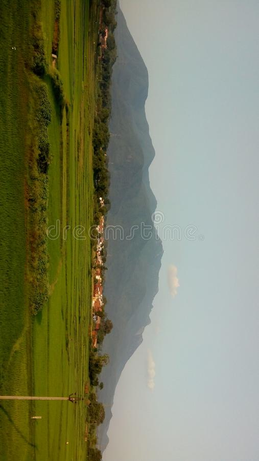 Природа, гора, зеленый цвет, поле, одичалое стоковая фотография