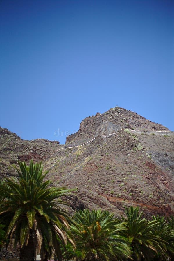 Природа, горы, острова, камни и кусты, ладони, заводы под убийственным солнцем, красная гора, национальный парк Teide, Испания, стоковое изображение rf