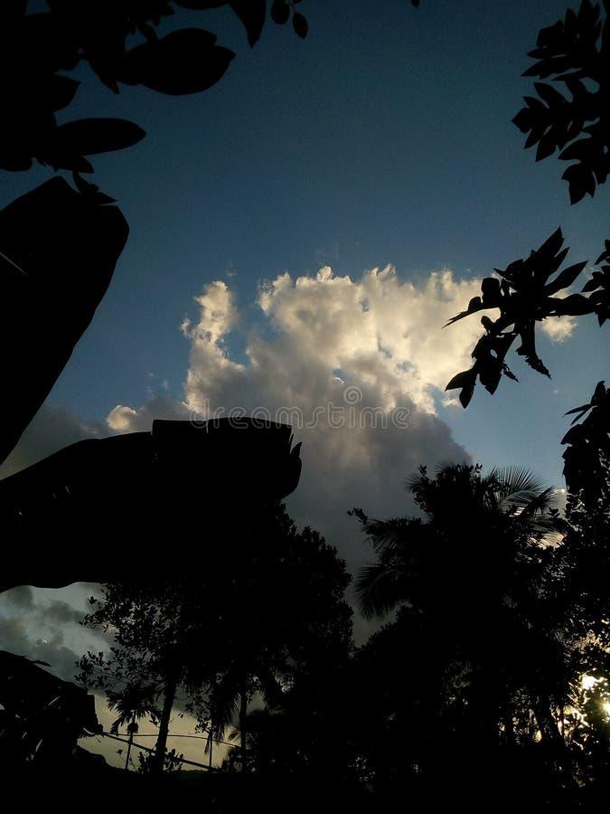 Природа изменения красоты климата Кералы envg взгляда неба кокосовой пальмы стоковая фотография