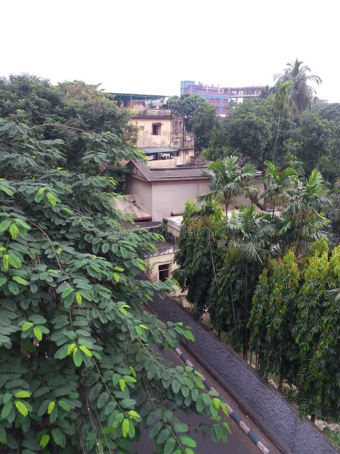 Природа и здание стоковое фото