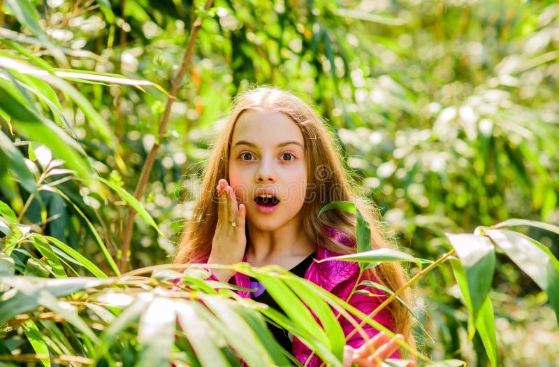 Природа лета o Счастье детства r Зеленая окружающая среда маленькая девочка тратит свободное время внутри стоковые изображения rf