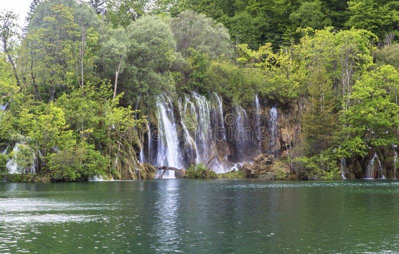 Природа национального парка озер Plitvice летом стоковое фото