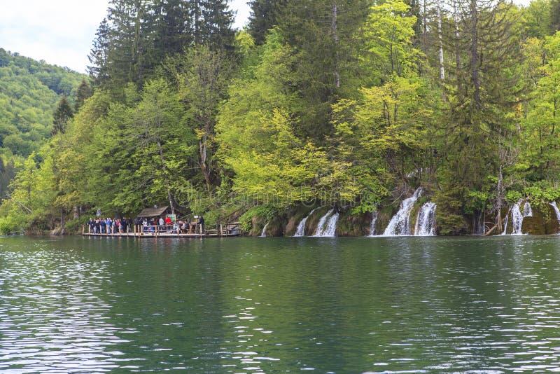Природа национального парка озер Plitvice летом стоковая фотография