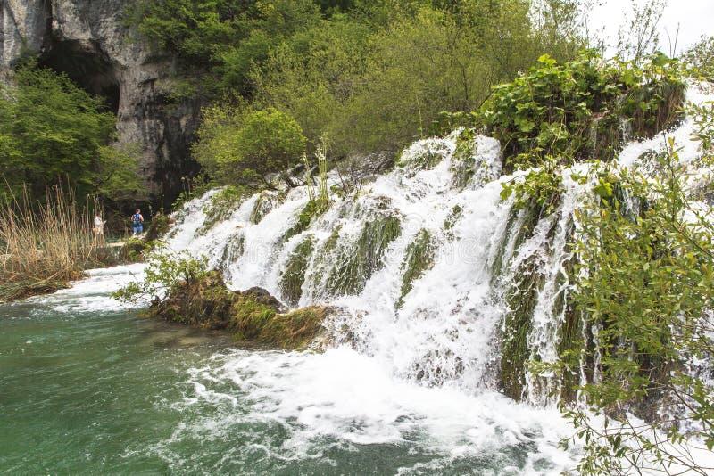 Природа национального парка озер Plitvice летом стоковые изображения